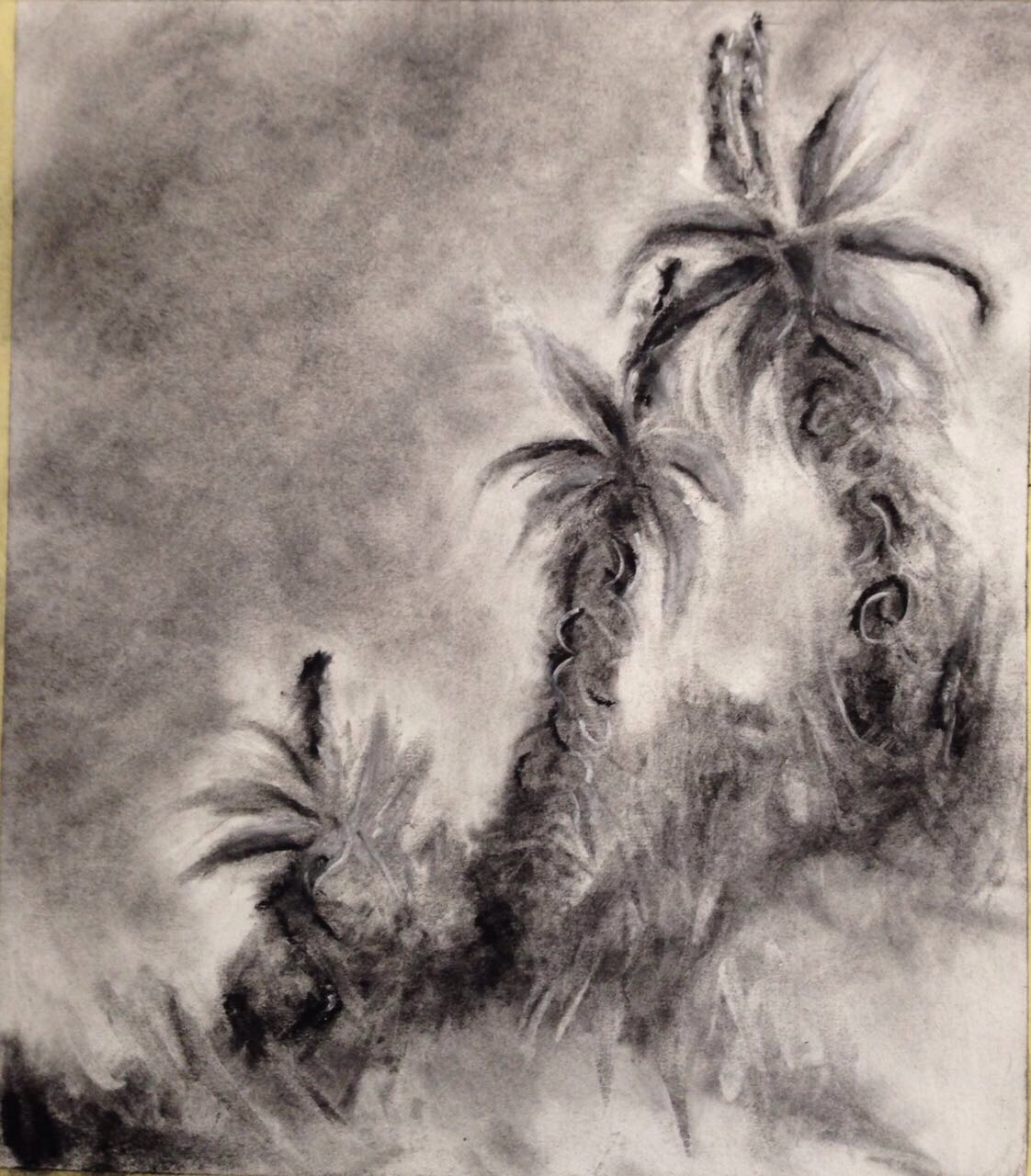 Janet DixonWaiting In the Wings Charcoal on  Fabriano 30x27cm. Unframed R450