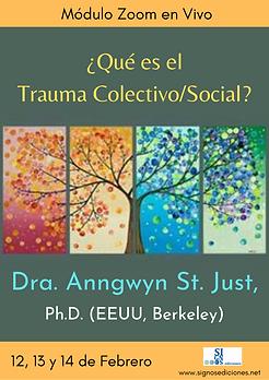 ¿Qué es el Trauma Colectivo_Social_.png