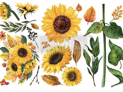 Re-Design Small Transfer -SUNFLOWER AFTERNOON