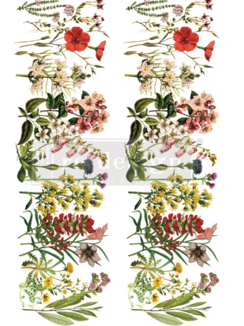 Re-Design Transfer - THE FLOWER FIELDS