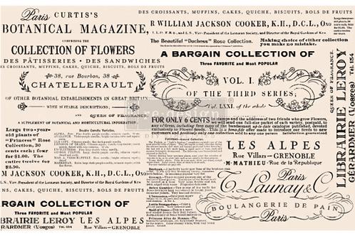 Re-Design Decoupage Paper  -FLORAL TEXT