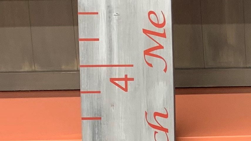 Growth Chart -Gray with red
