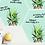 Thumbnail: Pineapple Crown Dry Erase