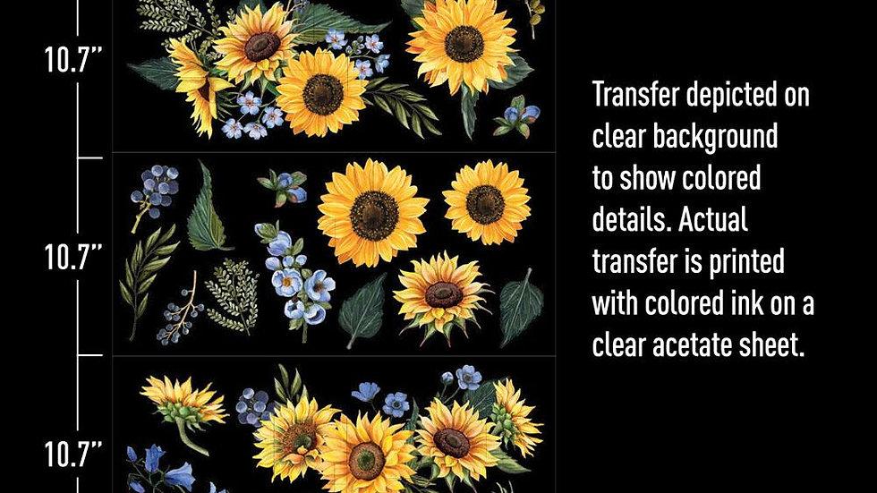 Re-Design Transfer - SUNFLOWER FIELDS