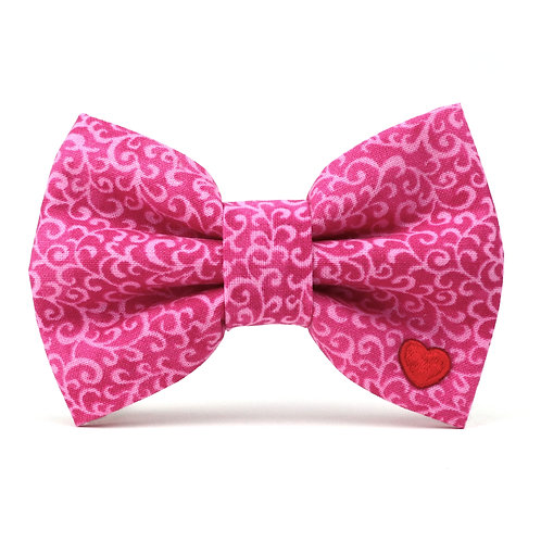 Kasha   dog bow tie