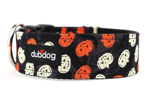 Jack | dog collar