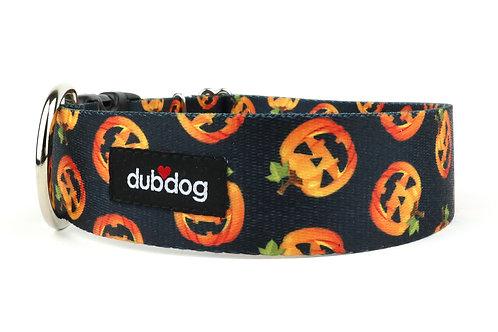 Pumpkins   dog collar