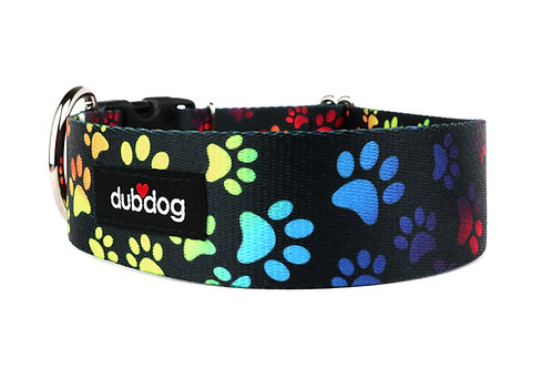 Rainbow Paws | dog collar