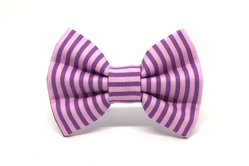 Grape | diva dog bow