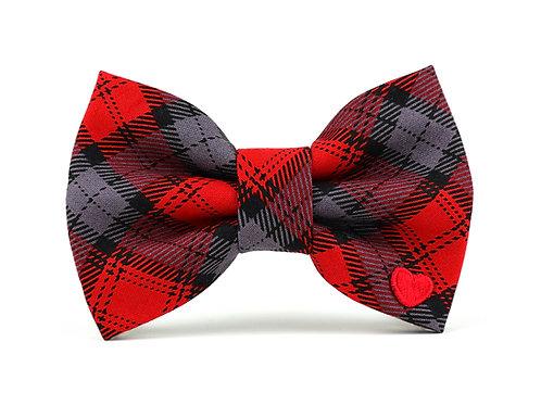 Merrick | dog bow tie