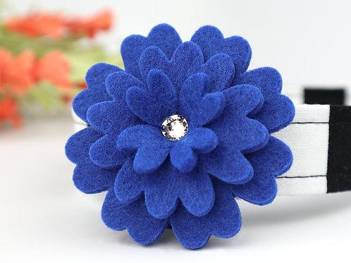 Royal Blue | attachment