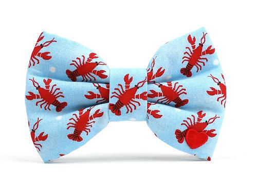 Sebastan   dog bow tie