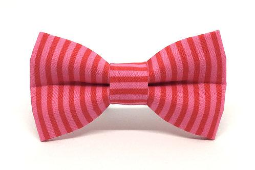 Lipstick Stripe | dog bow tie