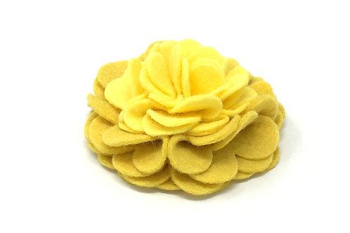 Buttercup Bloom   attachment