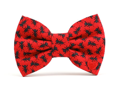 Ant Farm | dog bow tie