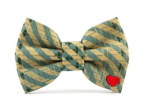Tucker   dog bow tie