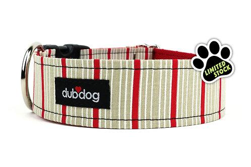 Cooper | dog collar