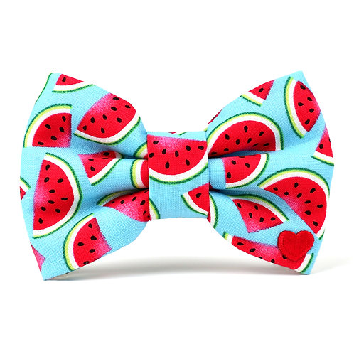 Watermelon | dog bow tie