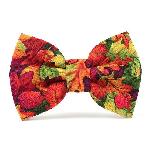 Fallen | dog bow tie