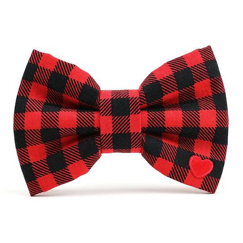 Cozy Check   dog bow tie