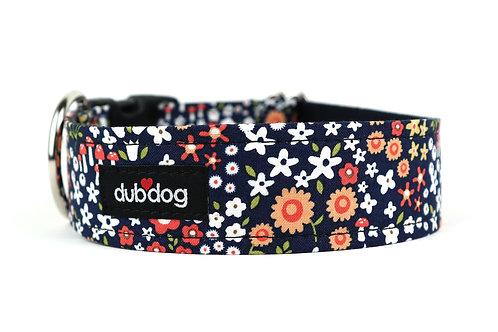 Amber | dog collar