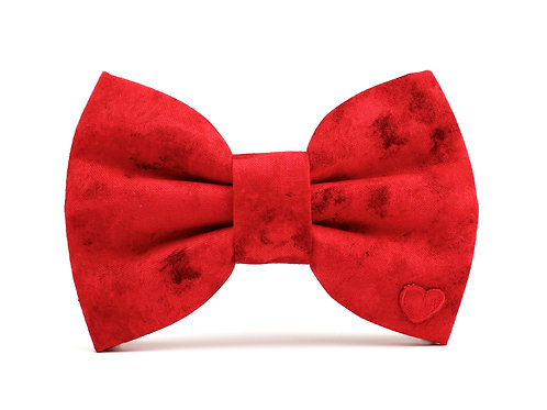 Flash | dog bow tie