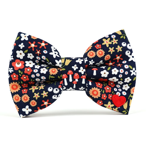 Amber | dog bow tie
