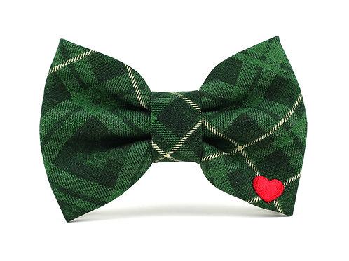 Spruce | dog bow tie