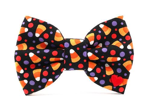 Treats | dog bow tie