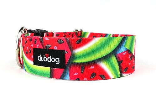 Watermelon | dog collar
