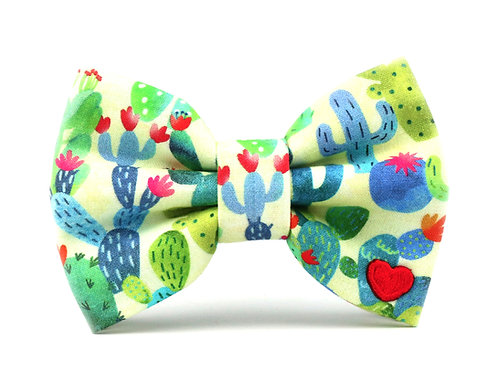 Cactus   dog bow tie