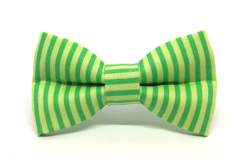 Limeade Stripe | dog bow tie