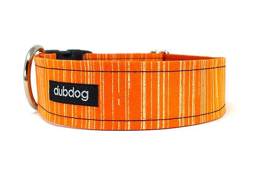 Clementine | dog collar