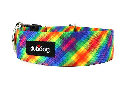 Rainbow | dog collar