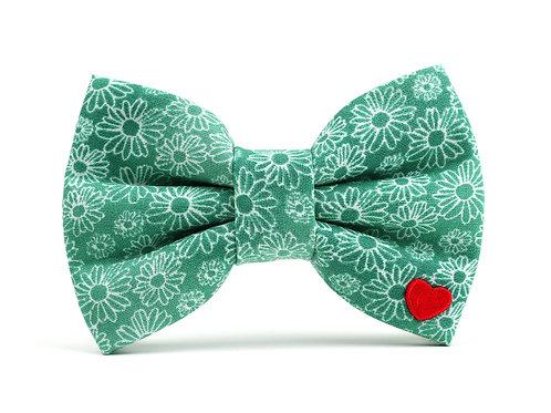 Emma | dog bow tie