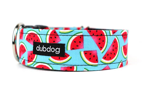 Watermelon | dog collar