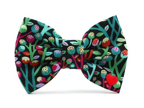 Haley   dog bow tie