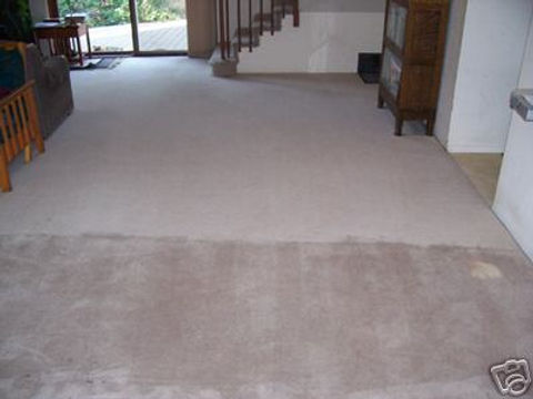 carpet cleaning before and after 4.jpg
