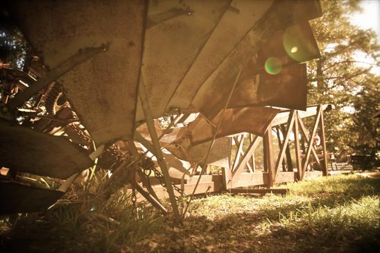 SeasonsHarvest_Nov20150061.jpg