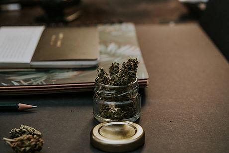 cannabis and books.jpg