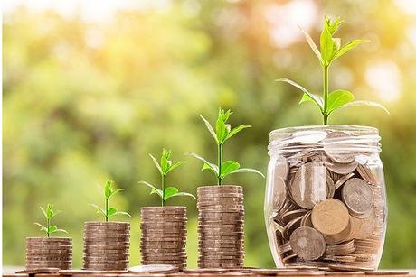 growing capital.jpg