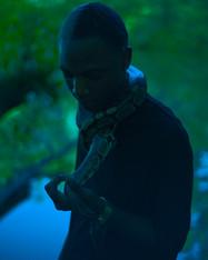 snake 9-1.jpg