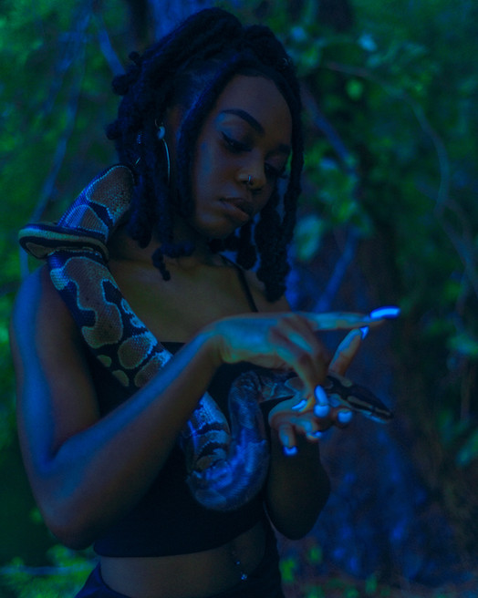 snake janay 2-1.jpg