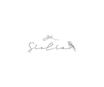 sialia-logo2.jpg