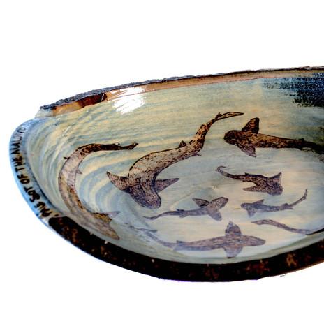 Daydreams Factory _ shark bowl primary_e