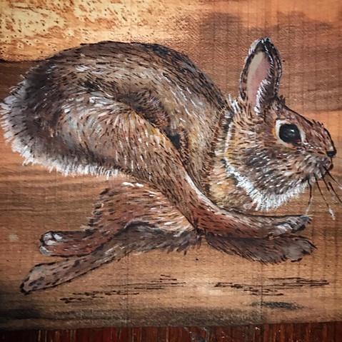 Rabbit Wall Pocket