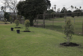 Alondra Community Regional Park