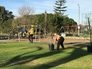 LA Conservation Corps, tree-planting at Alondra Community Regional Park