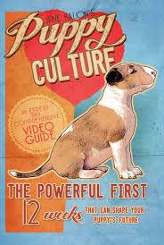 Jane Killion Puppy Culture.jpg