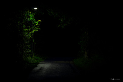 Night in the park